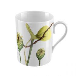 Ikebana  - Coffret 6 mugs